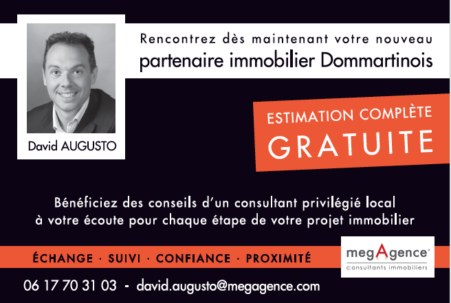 immobilier augusto